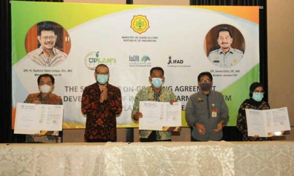 Kabupaten Lebak Terpilih Dalam Pelaksanaan Upland Project Komoditas Manggis