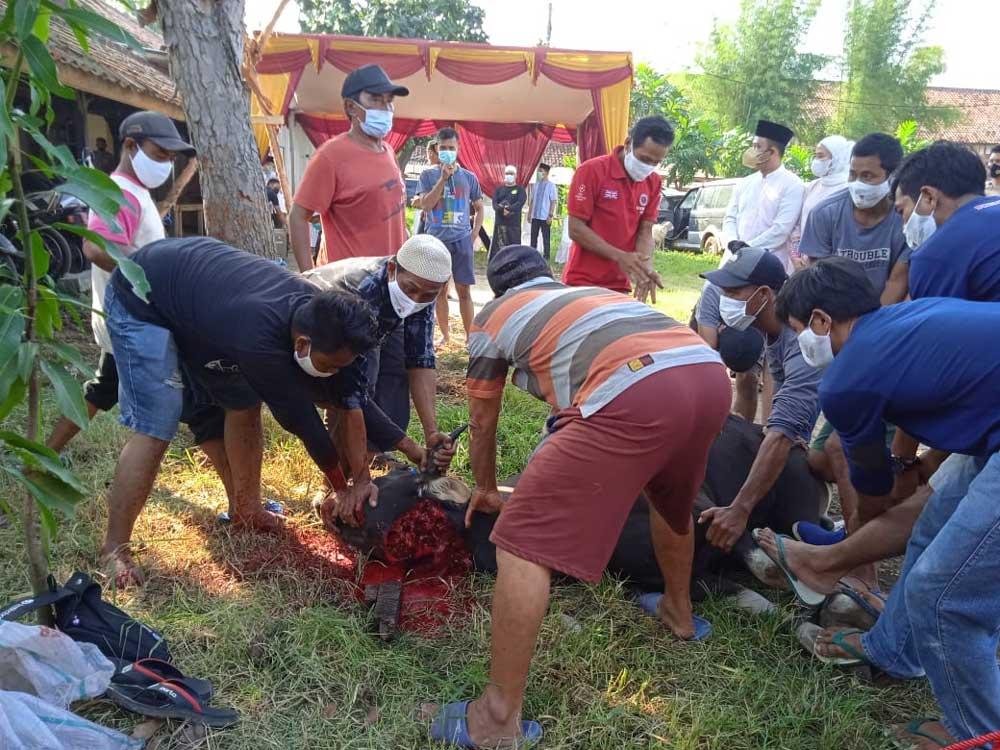 Idul Adha 1442 H, Polres Serang Kota Bagikan 5000 Paket Daging Kurban